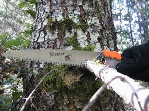 EverSaw 8..0 cutting branch during zombie apocalypse