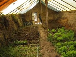 An underground greenhouse or walipini